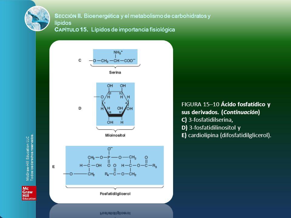 FIGURA 15–10 Ácido fosfatídico y sus derivados. (Continuación) C) 3-fosfatidilserina, D) 3-fosfatidilinositol y E) cardiolipina (difosfatidilglicerol)