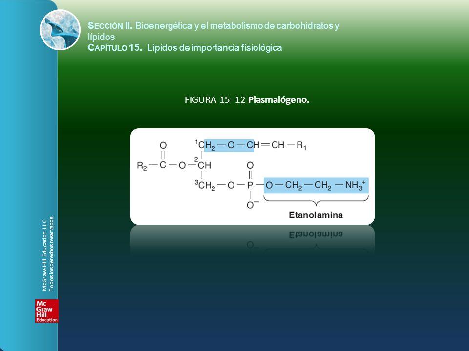FIGURA 15–12 Plasmalógeno. S ECCIÓN II. Bioenergética y el metabolismo de carbohidratos y lípidos C APÍTULO 15. Lípidos de importancia fisiológica McG