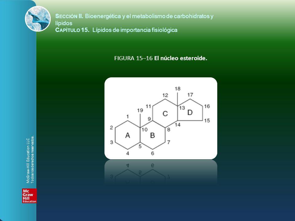 FIGURA 15–16 El núcleo esteroide. S ECCIÓN II. Bioenergética y el metabolismo de carbohidratos y lípidos C APÍTULO 15. Lípidos de importancia fisiológ