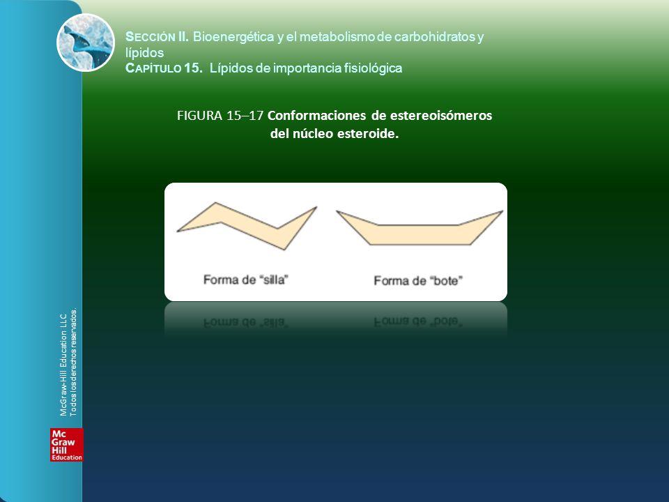FIGURA 15–17 Conformaciones de estereoisómeros del núcleo esteroide. S ECCIÓN II. Bioenergética y el metabolismo de carbohidratos y lípidos C APÍTULO