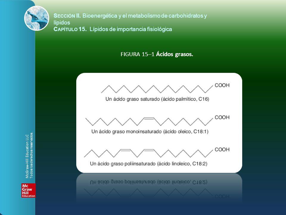 S ECCIÓN II. Bioenergética y el metabolismo de carbohidratos y lípidos C APÍTULO 15. Lípidos de importancia fisiológica FIGURA 15–1 Ácidos grasos. McG