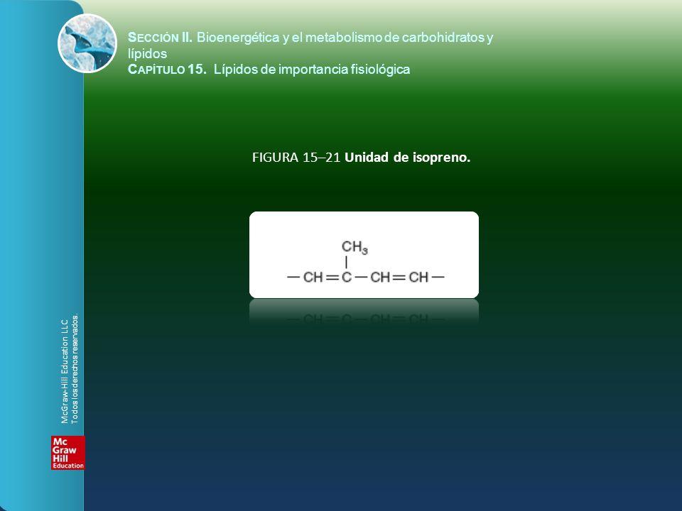 FIGURA 15–21 Unidad de isopreno. S ECCIÓN II. Bioenergética y el metabolismo de carbohidratos y lípidos C APÍTULO 15. Lípidos de importancia fisiológi