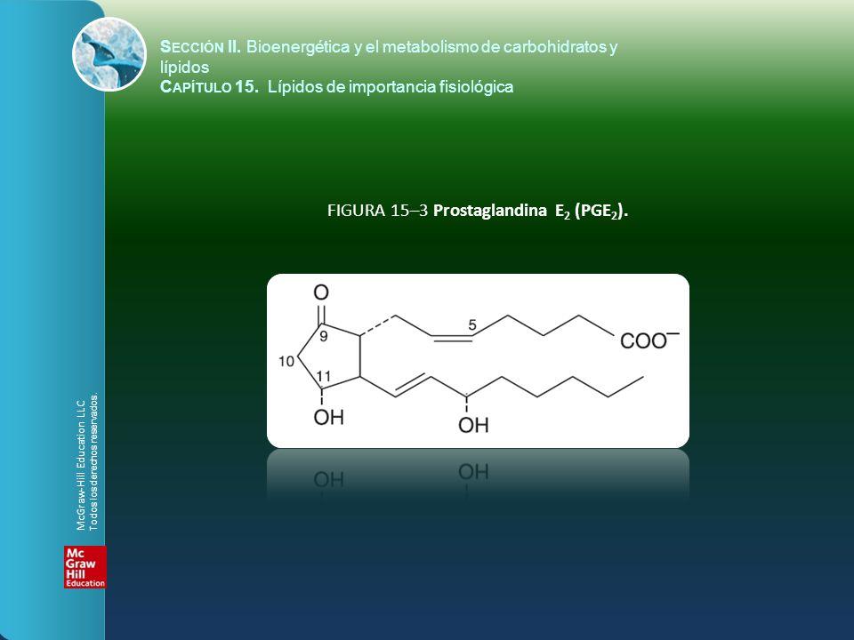 FIGURA 15–3 Prostaglandina E 2 (PGE 2 ). S ECCIÓN II. Bioenergética y el metabolismo de carbohidratos y lípidos C APÍTULO 15. Lípidos de importancia f
