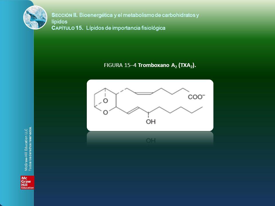 FIGURA 15–4 Tromboxano A 2 (TXA 2 ). S ECCIÓN II. Bioenergética y el metabolismo de carbohidratos y lípidos C APÍTULO 15. Lípidos de importancia fisio