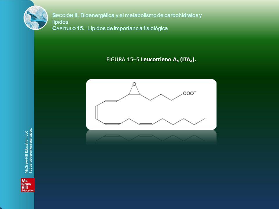 FIGURA 15–5 Leucotrieno A 4 (LTA 4 ). S ECCIÓN II. Bioenergética y el metabolismo de carbohidratos y lípidos C APÍTULO 15. Lípidos de importancia fisi
