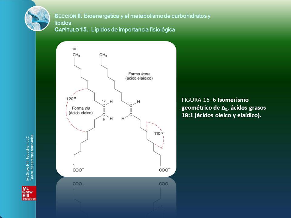 FIGURA 15–6 Isomerismo geométrico de Δ 9, ácidos grasos 18:1 (ácidos oleico y elaídico). S ECCIÓN II. Bioenergética y el metabolismo de carbohidratos