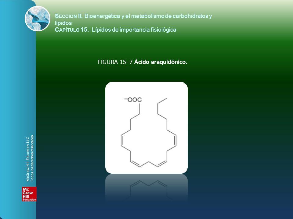 FIGURA 15–7 Ácido araquidónico. S ECCIÓN II. Bioenergética y el metabolismo de carbohidratos y lípidos C APÍTULO 15. Lípidos de importancia fisiológic