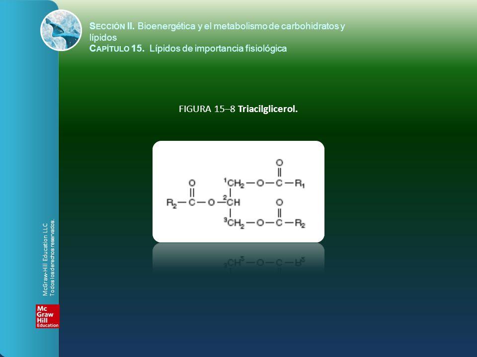 FIGURA 15–8 Triacilglicerol. S ECCIÓN II. Bioenergética y el metabolismo de carbohidratos y lípidos C APÍTULO 15. Lípidos de importancia fisiológica M