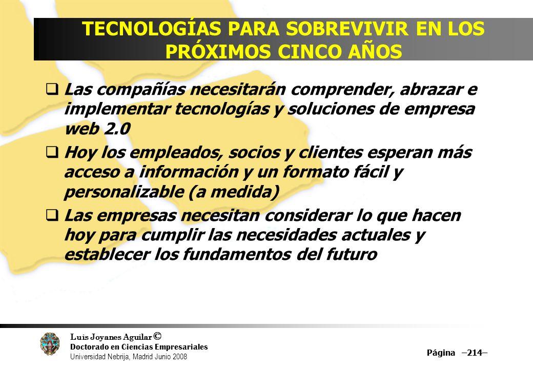 Luis Joyanes Aguilar © Doctorado en Ciencias Empresariales Universidad Nebrija, Madrid Junio 2008 Página –214– TECNOLOGÍAS PARA SOBREVIVIR EN LOS PRÓX