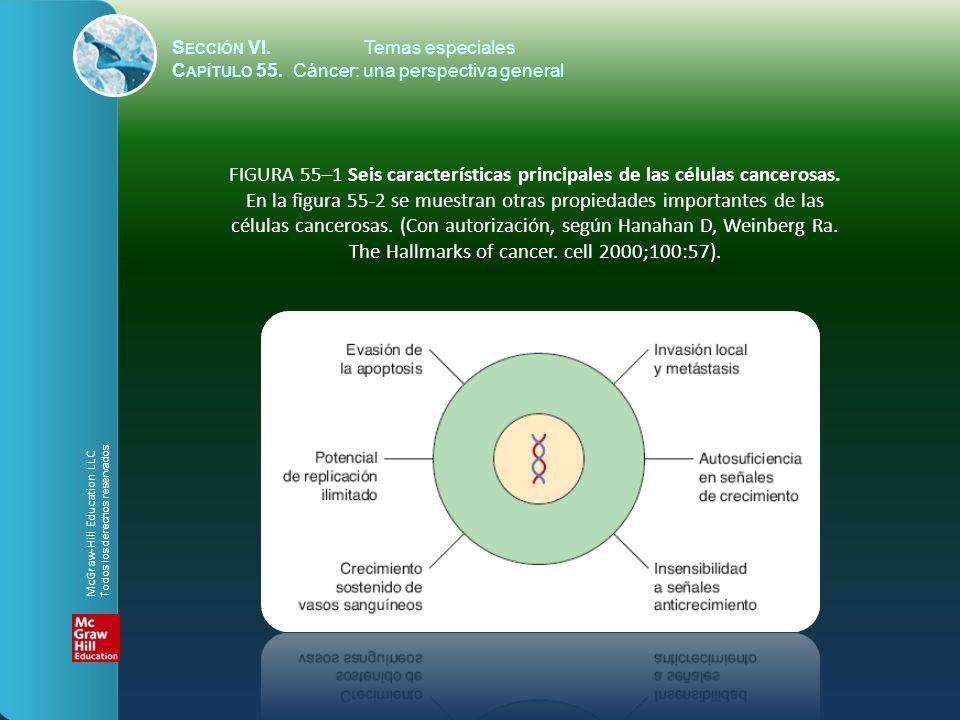 S ECCIÓN VI.Temas especiales C APÍTULO 55. Cáncer: una perspectiva general FIGURA 55–1 Seis características principales de las células cancerosas. En