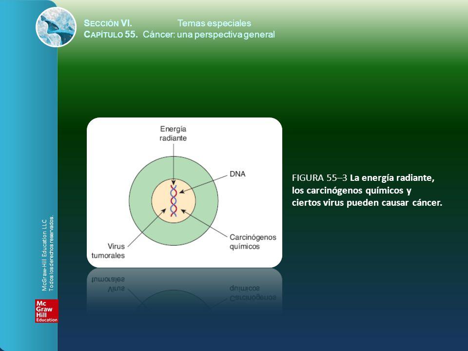 S ECCIÓN VI.Temas especiales C APÍTULO 55. Cáncer: una perspectiva general FIGURA 55–3 La energía radiante, los carcinógenos químicos y ciertos virus