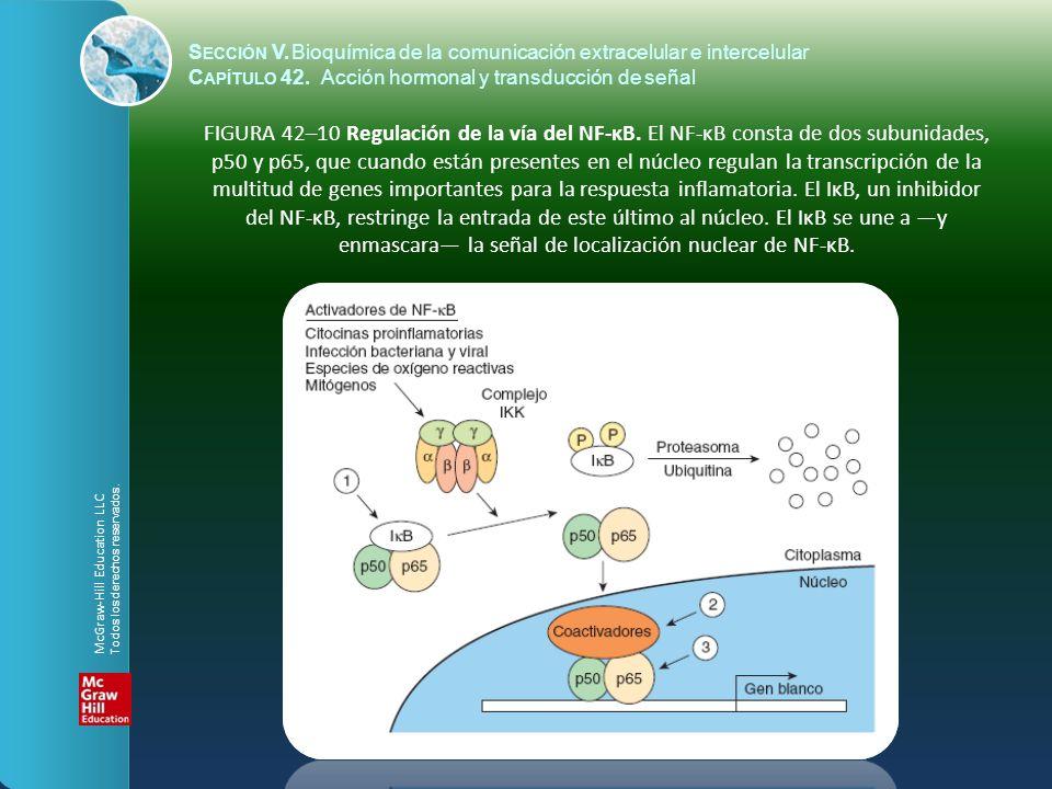S ECCIÓN V.Bioquímica de la comunicación extracelular e intercelular C APÍTULO 42. Acción hormonal y transducción de señal FIGURA 42–10 Regulación de