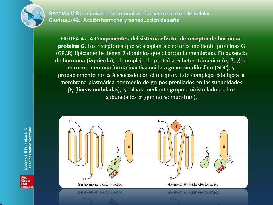 S ECCIÓN V.Bioquímica de la comunicación extracelular e intercelular C APÍTULO 42. Acción hormonal y transducción de señal FIGURA 42–4 Componentes del