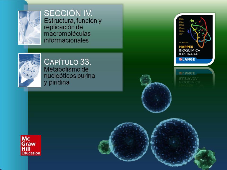 SECCIÓN IV. Estructura, función y replicación de macromoléculas informacionales C APÍTULO 33. Metabolismo de nucleóticos purina y piridina