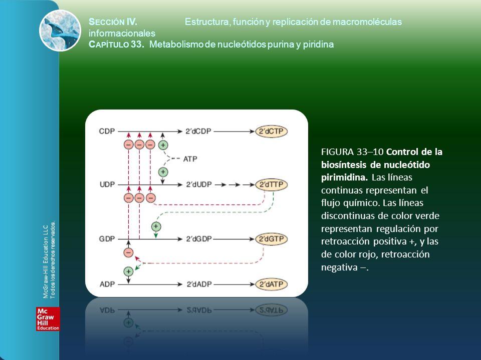 FIGURA 33–10 Control de la biosíntesis de nucleótido pirimidina. Las líneas continuas representan el flujo químico. Las líneas discontinuas de color v