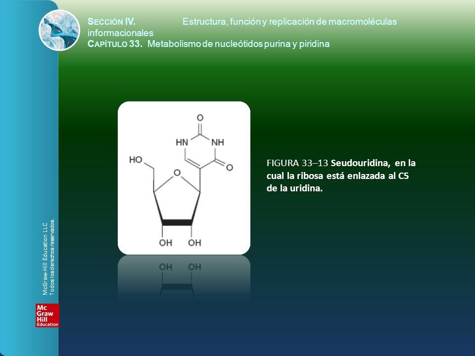 FIGURA 33–13 Seudouridina, en la cual la ribosa está enlazada al C5 de la uridina. S ECCIÓN IV.Estructura, función y replicación de macromoléculas inf