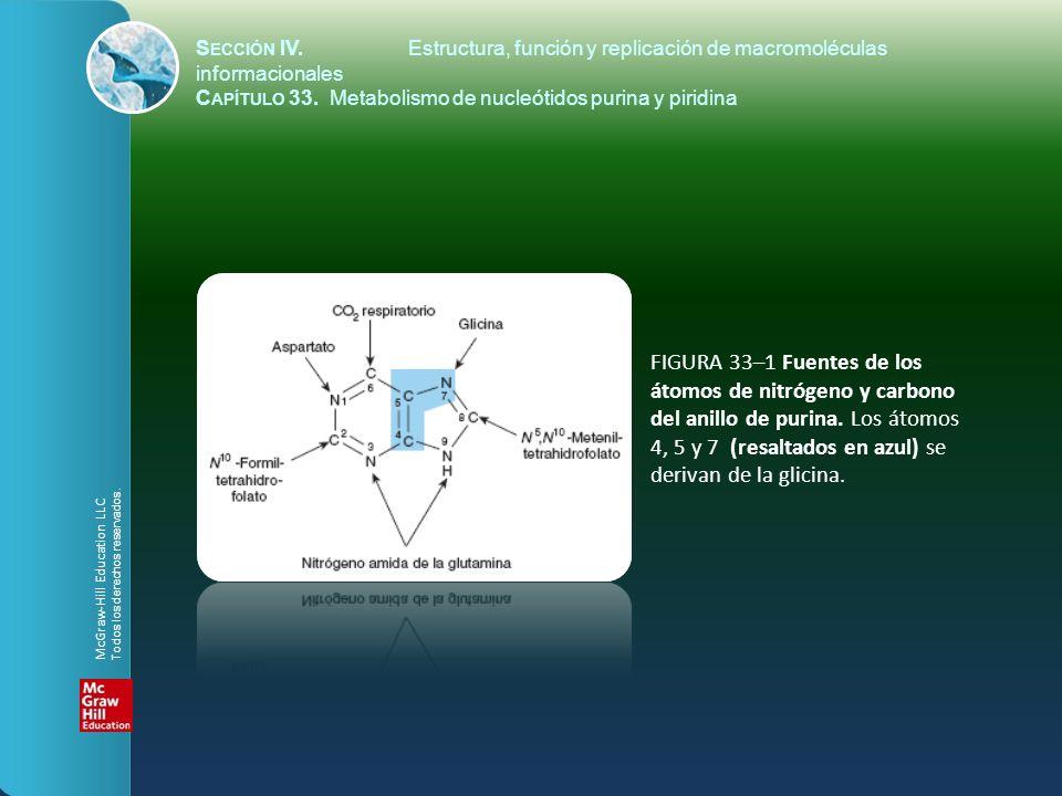 S ECCIÓN IV.Estructura, función y replicación de macromoléculas informacionales C APÍTULO 33. Metabolismo de nucleótidos purina y piridina FIGURA 33–1