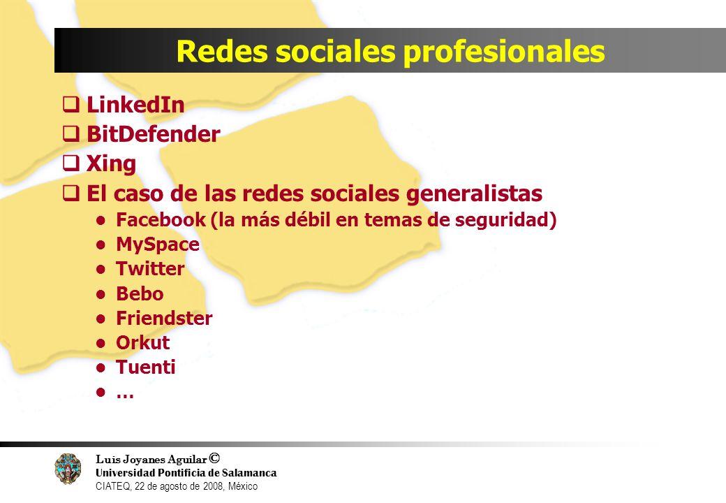 Luis Joyanes Aguilar © Universidad Pontificia de Salamanca CIATEQ, 22 de agosto de 2008, México Redes sociales profesionales LinkedIn BitDefender Xing
