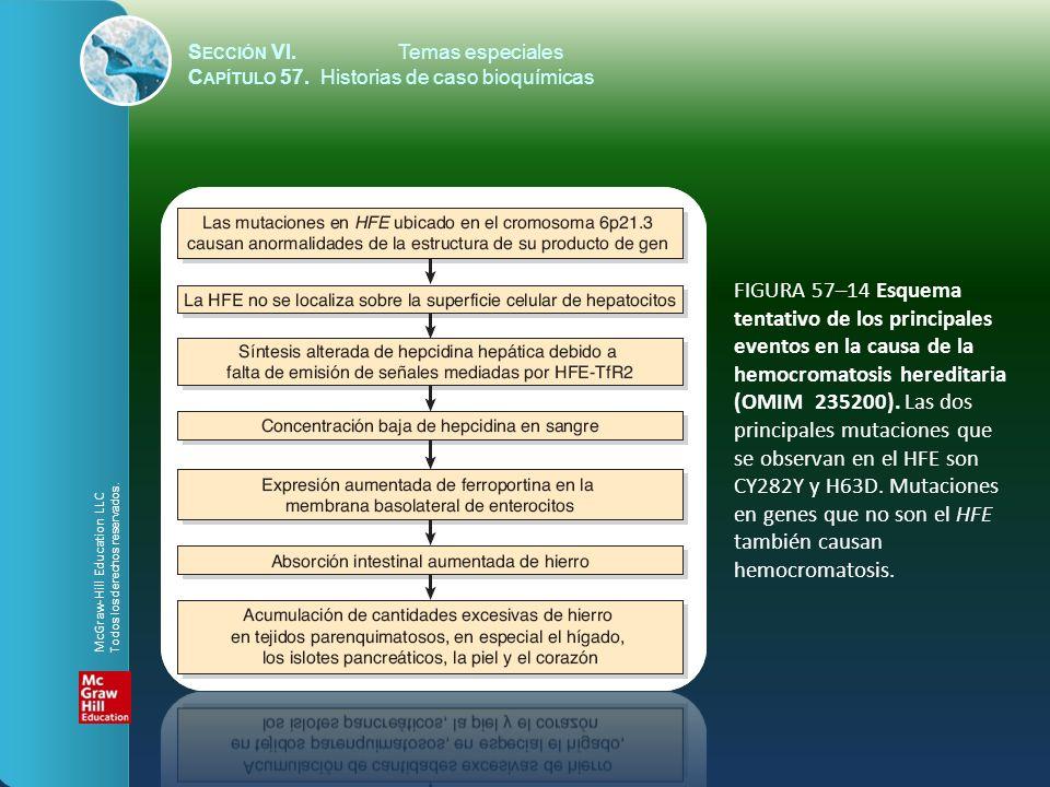 FIGURA 57–15 Algunos de los principales signos de hipotiroidismo.