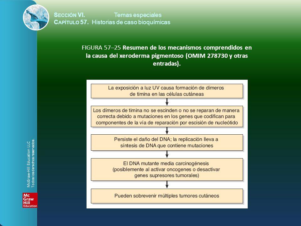 S ECCIÓN VI.Temas especiales C APÍTULO 57. Historias de caso bioquímicas FIGURA 57–25 Resumen de los mecanismos comprendidos en la causa del xeroderma