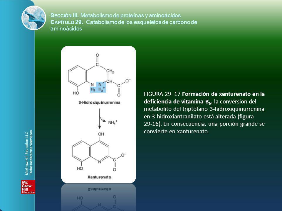 FIGURA 29–17 Formación de xanturenato en la deficiencia de vitamina B 6. la conversión del metabolito del triptófano 3-hidroxiquinurrenina en 3-hidrox