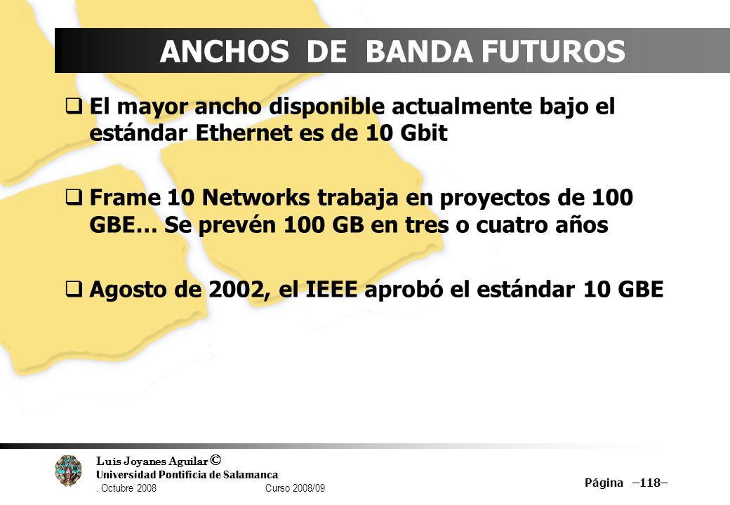 Luis Joyanes Aguilar © Universidad Pontificia de Salamanca. Octubre 2008 Curso 2008/09 Página –118– ANCHOS DE BANDA FUTUROS El mayor ancho disponible