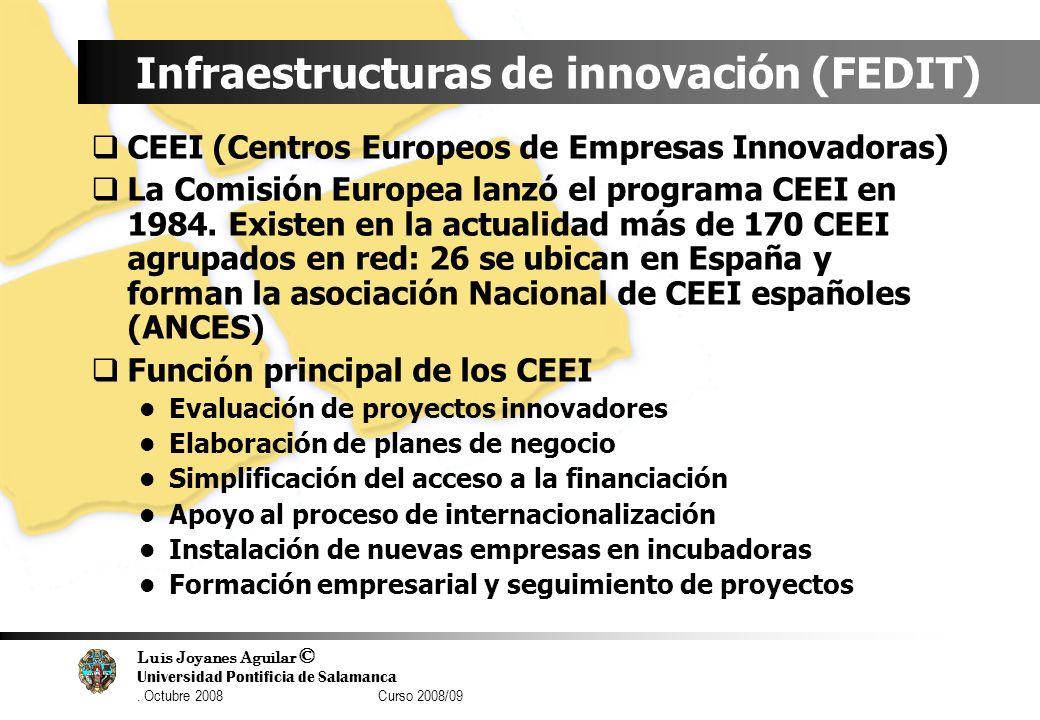 Luis Joyanes Aguilar © Universidad Pontificia de Salamanca. Octubre 2008 Curso 2008/09 Infraestructuras de innovación (FEDIT) CEEI (Centros Europeos d