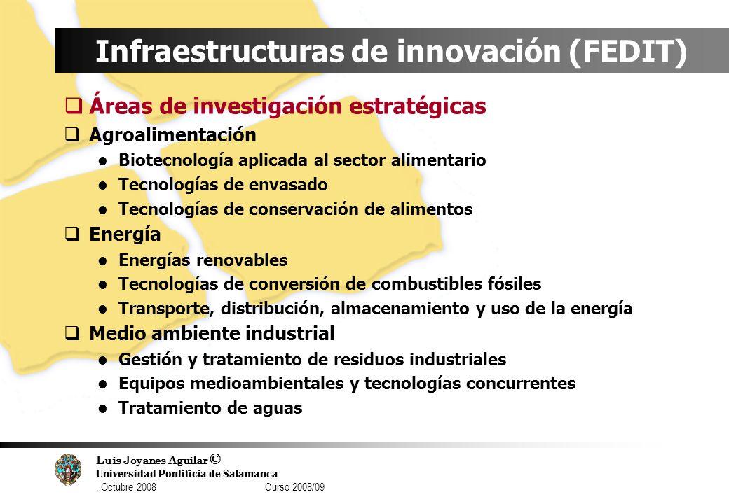 Luis Joyanes Aguilar © Universidad Pontificia de Salamanca. Octubre 2008 Curso 2008/09 Infraestructuras de innovación (FEDIT) Áreas de investigación e