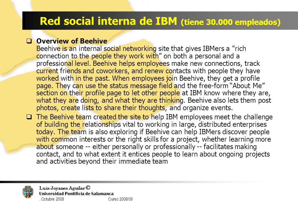 Luis Joyanes Aguilar © Universidad Pontificia de Salamanca. Octubre 2008 Curso 2008/09 Red social interna de IBM (tiene 30.000 empleados) Overview of