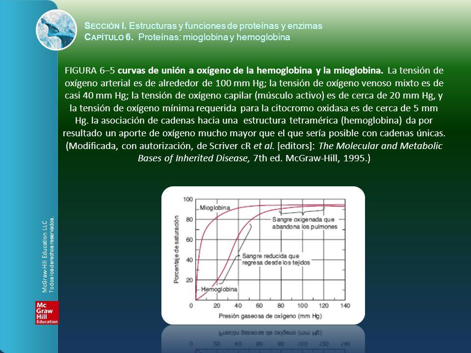 FIGURA 6–5 curvas de unión a oxígeno de la hemoglobina y la mioglobina. La tensión de oxígeno arterial es de alrededor de 100 mm Hg; la tensión de oxí