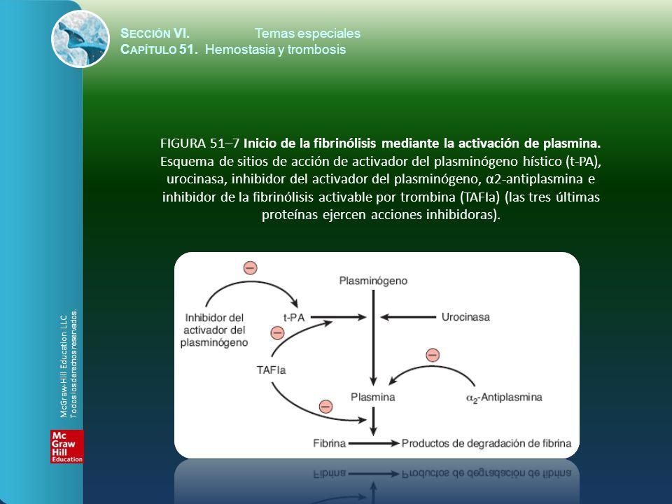 FIGURA 51–8 (A) Diagrama de la activación plaquetaria por colágeno, trombina, tromboxano A 2 y ADP, e inhibición por prostaciclina.