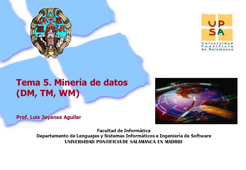 Facultad de Informática Departamento de Lenguajes y Sistemas Informáticos e Ingeniería de Software UNIVERSIDAD PONTIFICIA DE SALAMANCA EN MADRID 116 P
