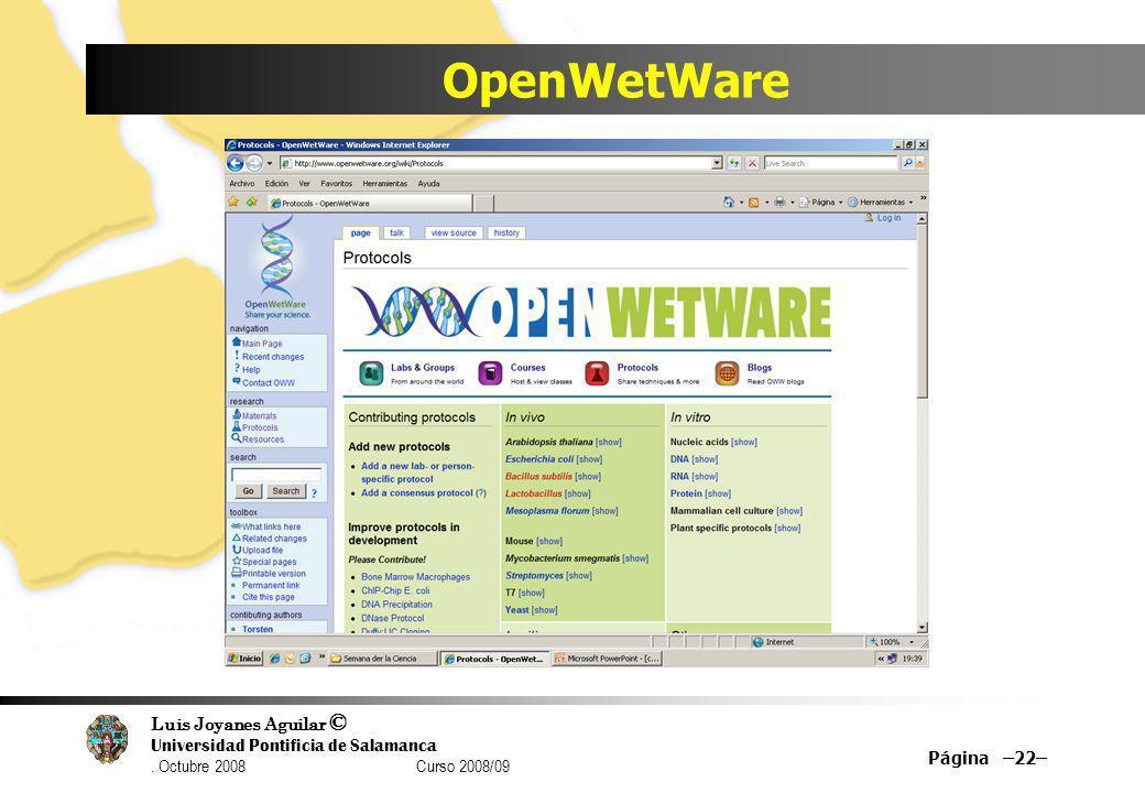 Luis Joyanes Aguilar © Universidad Pontificia de Salamanca. Octubre 2008 Curso 2008/09 OpenWetWare Página –22–