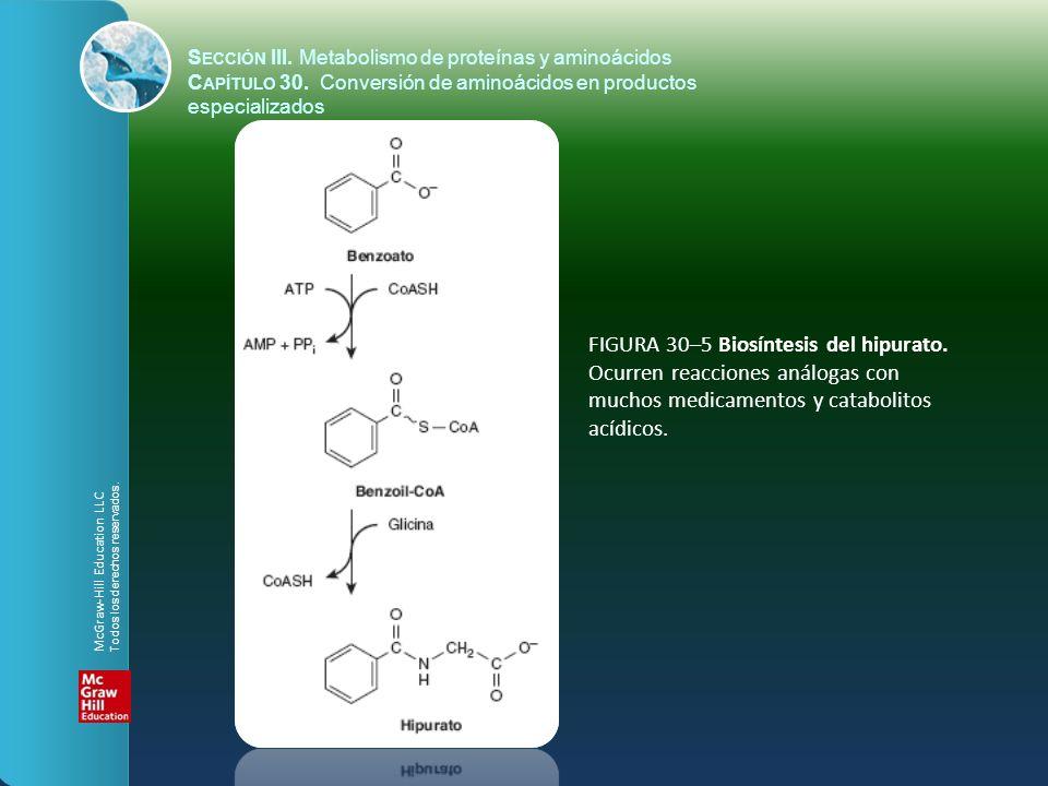 FIGURA 30–5 Biosíntesis del hipurato. Ocurren reacciones análogas con muchos medicamentos y catabolitos acídicos. S ECCIÓN III. Metabolismo de proteín