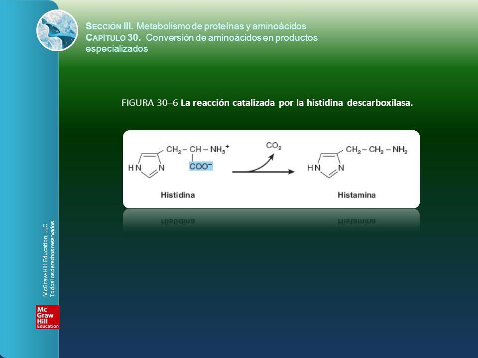 FIGURA 30–6 La reacción catalizada por la histidina descarboxilasa. S ECCIÓN III. Metabolismo de proteínas y aminoácidos C APÍTULO 30. Conversión de a