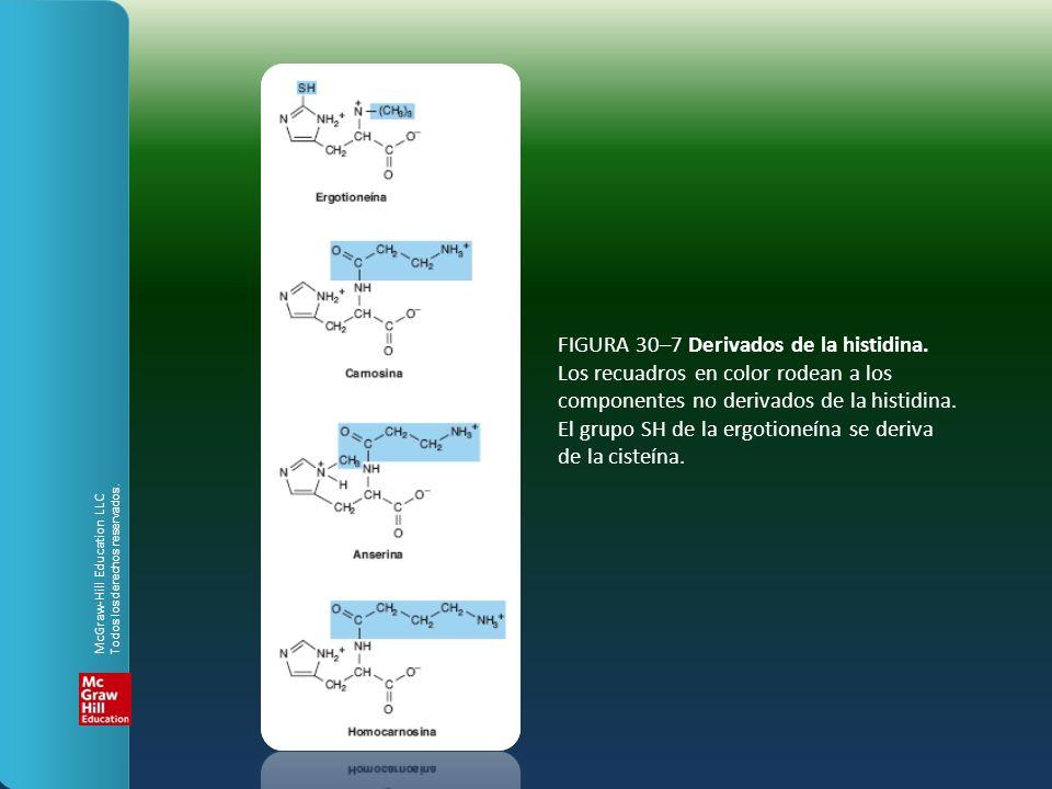 FIgura 30–8 biosíntesis de la S-adenosilmetionina, catalizada por la metionina adenosiltransferasa.