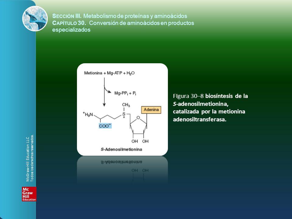FIgura 30–8 biosíntesis de la S-adenosilmetionina, catalizada por la metionina adenosiltransferasa. S ECCIÓN III. Metabolismo de proteínas y aminoácid