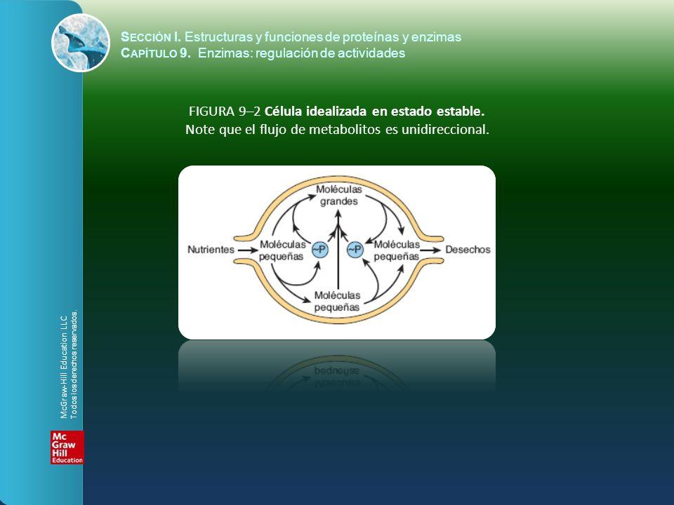 FIGURA 9–2 Célula idealizada en estado estable. Note que el flujo de metabolitos es unidireccional. S ECCIÓN I. Estructuras y funciones de proteínas y