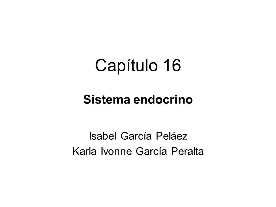 Capítulo 16 Sistema endocrino Isabel García Peláez Karla Ivonne García Peralta
