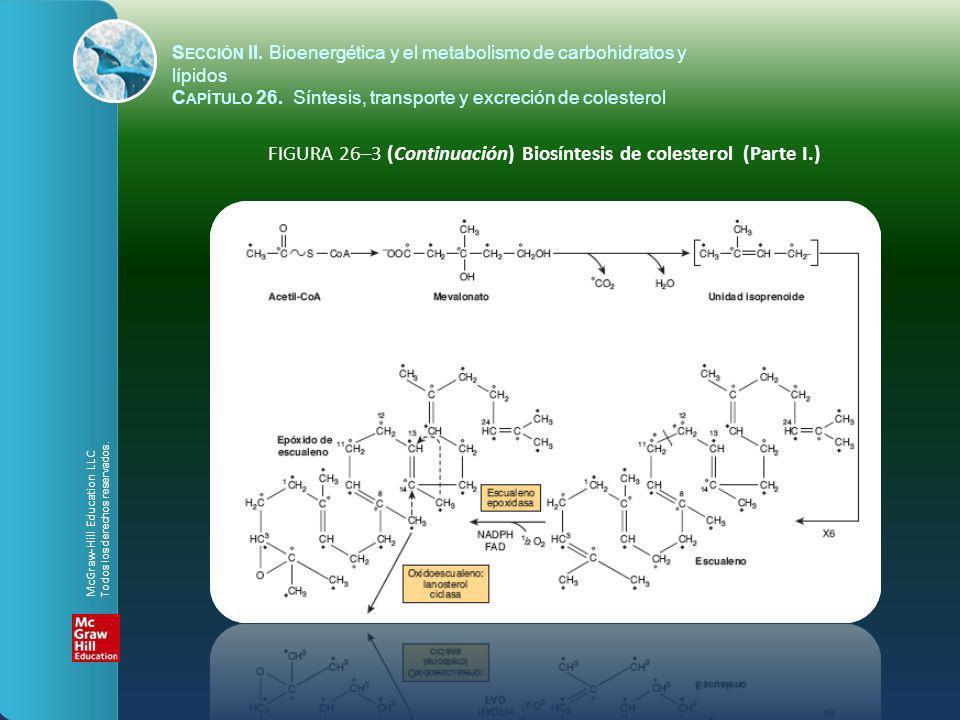 FIGURA 26–3 (Continuación) Biosíntesis de colesterol (Parte I.) S ECCIÓN II. Bioenergética y el metabolismo de carbohidratos y lípidos C APÍTULO 26. S