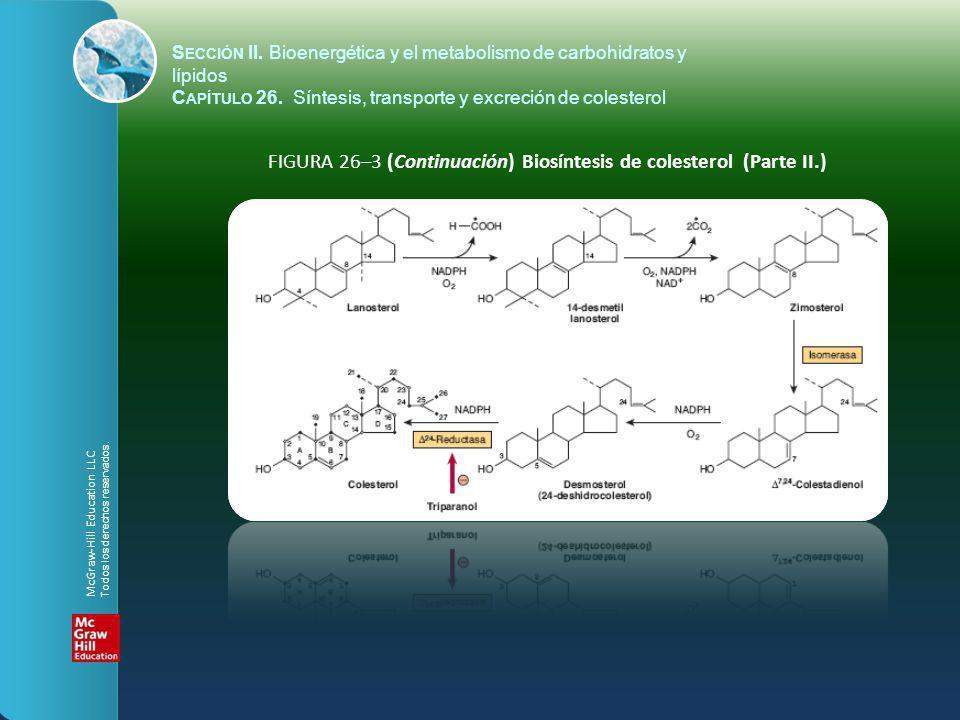 FIGURA 26–3 (Continuación) Biosíntesis de colesterol (Parte II.) S ECCIÓN II. Bioenergética y el metabolismo de carbohidratos y lípidos C APÍTULO 26.