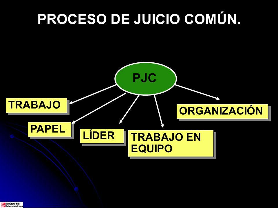 PROCESO DE JUICIO COMÚN. PJC TRABAJO PAPEL LÍDER TRABAJO EN EQUIPO ORGANIZACIÓN