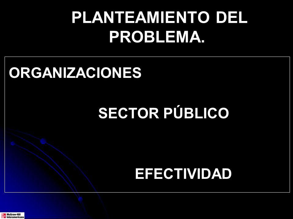 ORGANIZACIONES SECTOR PÚBLICO EFECTIVIDAD PLANTEAMIENTO DEL PROBLEMA.