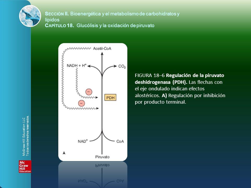 FIGURA 18–6 Regulación de la piruvato deshidrogenasa (PDH). Las flechas con el eje ondulado indican efectos alostéricos. A) Regulación por inhibición