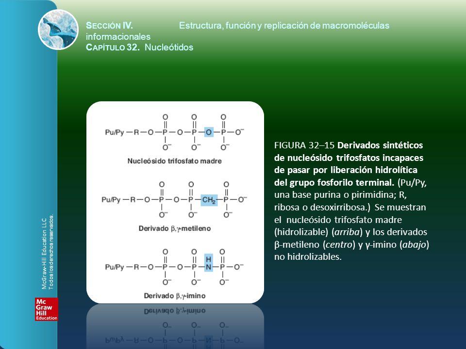 FIGURA 32–15 Derivados sintéticos de nucleósido trifosfatos incapaces de pasar por liberación hidrolítica del grupo fosforilo terminal. (Pu/Py, una ba