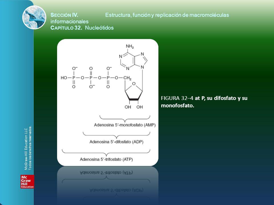 FIGURA 32–4 at P, su difosfato y su monofosfato. S ECCIÓN IV.Estructura, función y replicación de macromoléculas informacionales C APÍTULO 32. Nucleót