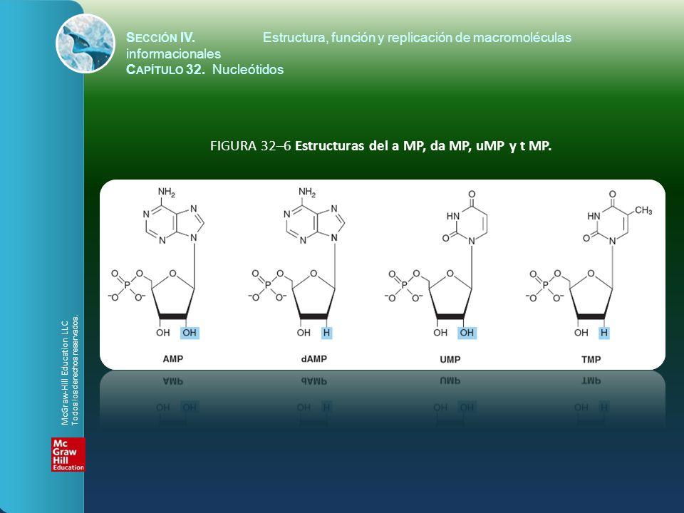 FIGURA 32–6 Estructuras del a MP, da MP, uMP y t MP. S ECCIÓN IV.Estructura, función y replicación de macromoléculas informacionales C APÍTULO 32. Nuc