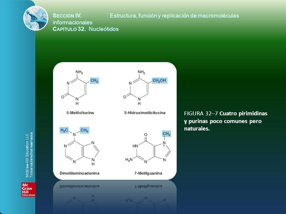 FIGURA 32–7 Cuatro pirimidinas y purinas poco comunes pero naturales. S ECCIÓN IV.Estructura, función y replicación de macromoléculas informacionales