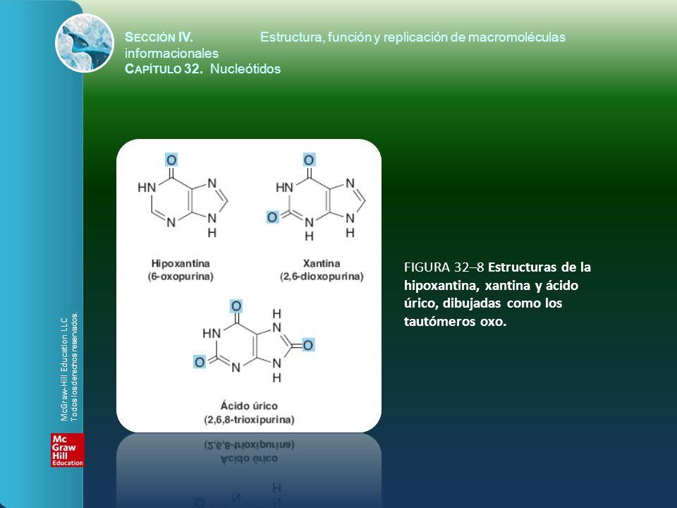 FIGURA 32–8 Estructuras de la hipoxantina, xantina y ácido úrico, dibujadas como los tautómeros oxo. S ECCIÓN IV.Estructura, función y replicación de