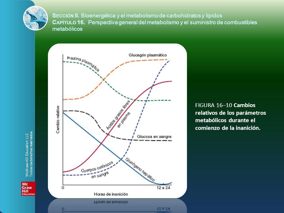 FIGURA 16–10 Cambios relativos de los parámetros metabólicos durante el comienzo de la inanición. S ECCIÓN II. Bioenergética y el metabolismo de carbo